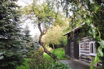 Szczawnica Atrakcja Galeria Krzywa Jabłonka