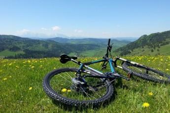 Szczawnica Atrakcja Wypożyczalnia rowerów Sandra