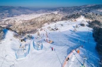Szczawnica Atrakcja Stacja narciarska Palenica